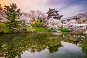 parken_flughafen_reise_japan